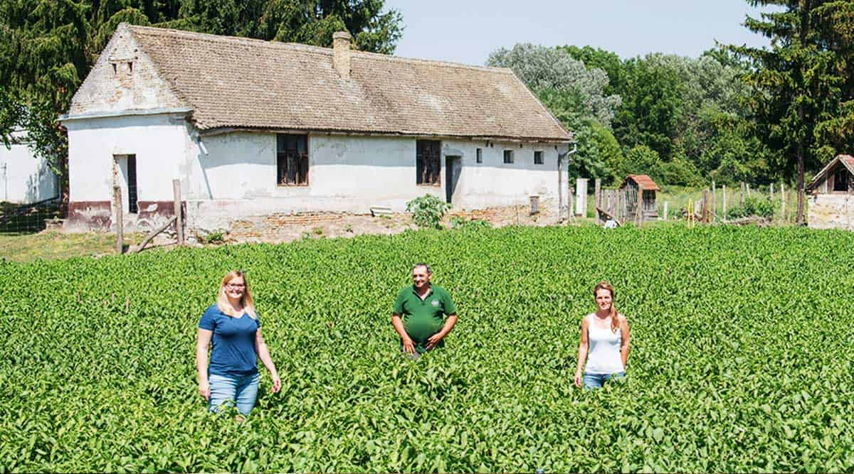 Read more about the article 2021 Magyar Konyha interjú a Fajszi Paprikával